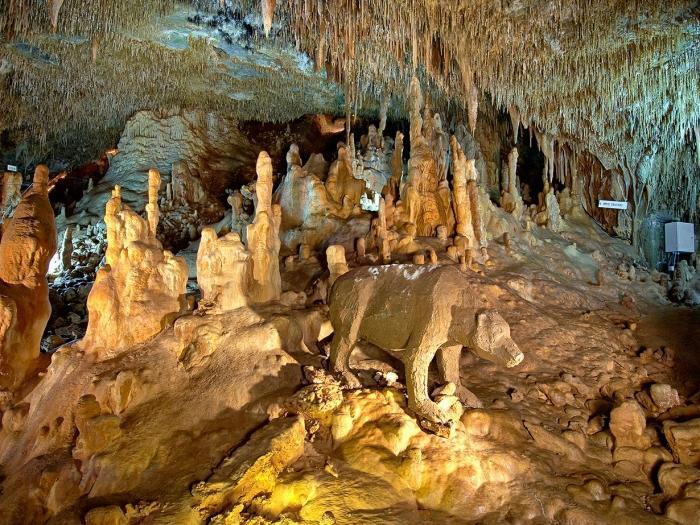 Grotta di Petralona